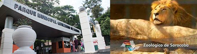 Zoológico Municipal de Sorocaba